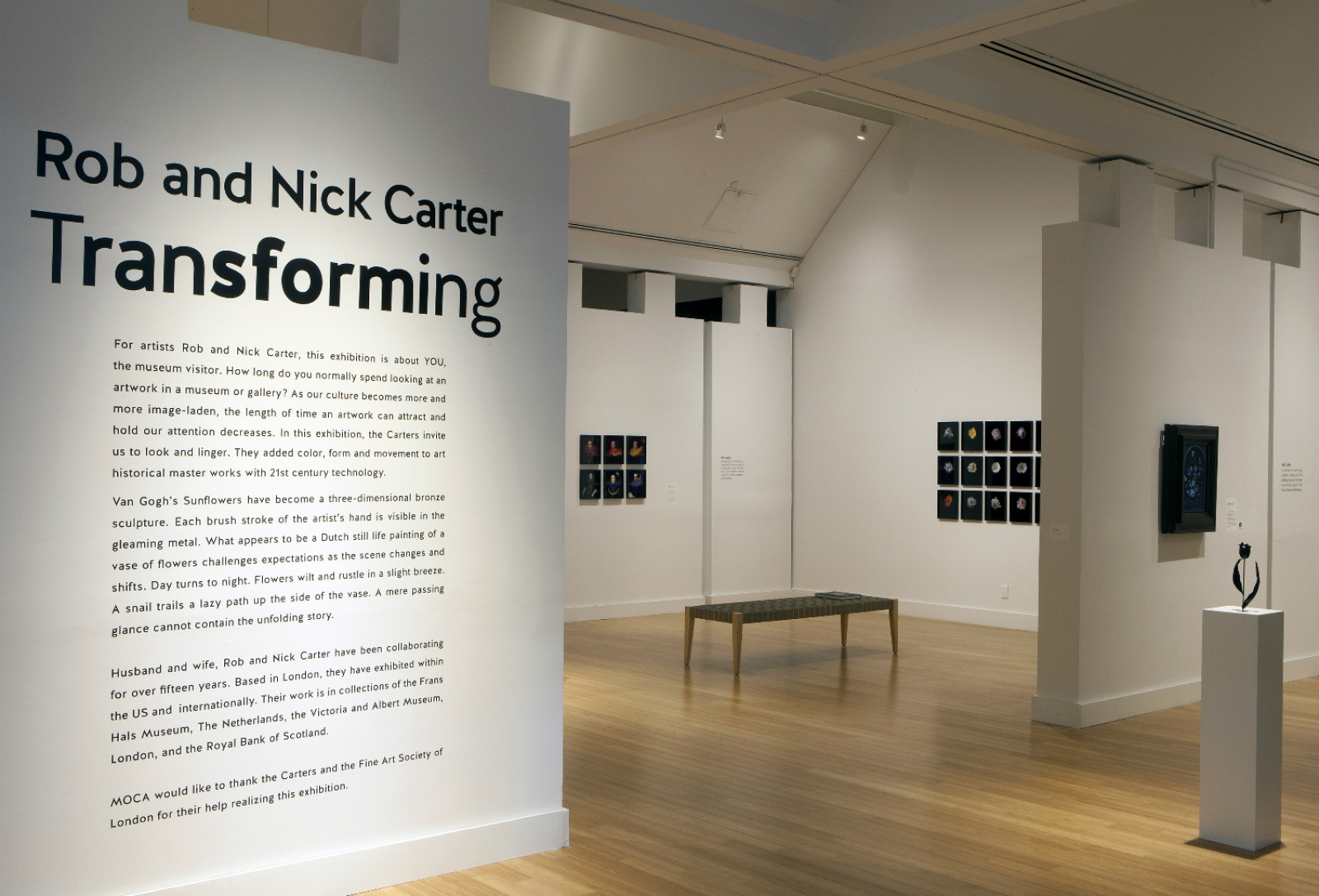 Rob and Nick Carter - Transforming, MOCA Virginia · © Copyright 2019